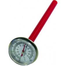Termometras su zondu